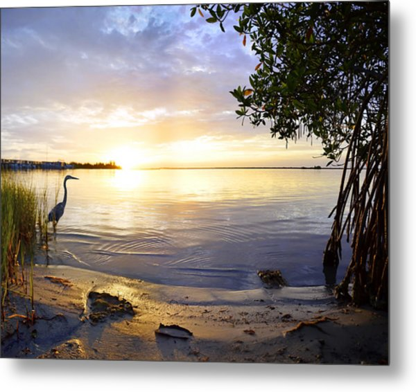 Heron Sunrise Metal Print