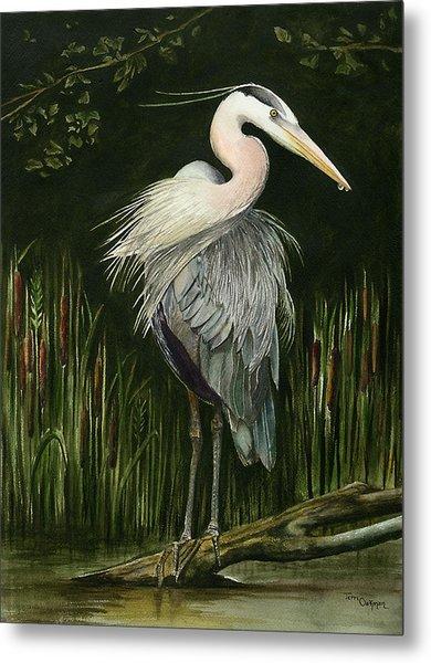 Heron Metal Print by Terri  Meyer