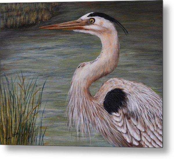 Heron Watching  Metal Print