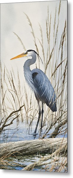 Herons Natural World Metal Print
