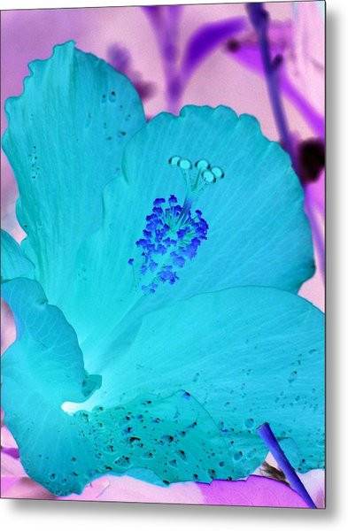 Hibiscus - After The Rain - Photopower 760 Metal Print
