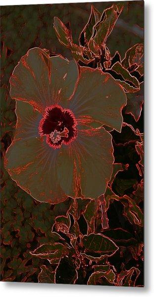 Hibiscus At Play  Metal Print