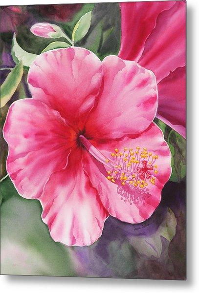 Hibiscus Metal Print