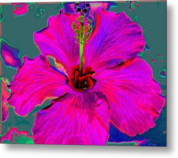 Hibiscus Skies Metal Print by Rebecca Flaig