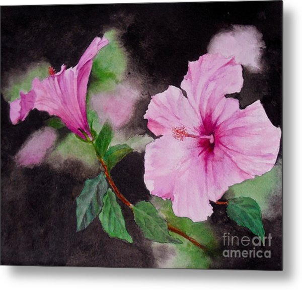 Hibiscus - So Pretty In Pink Metal Print