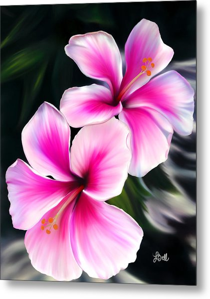 Hibiscuses Metal Print