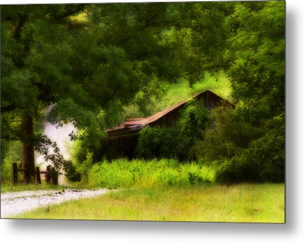 Hidden Down The Road Metal Print