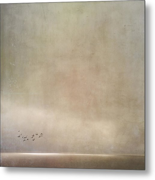 Metal Print featuring the photograph Hidden Horizon by Sally Banfill