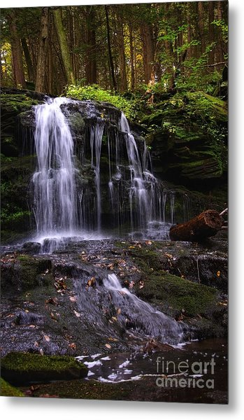 Hidden Waterfalls Of Wayne County I Metal Print