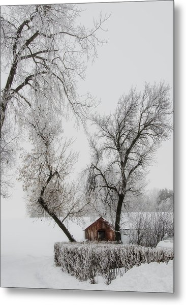 Hide Away Metal Print
