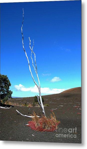 High Atop Maunakea On Hawaii Metal Print by Micah May