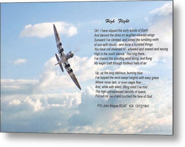 High Flight Metal Print