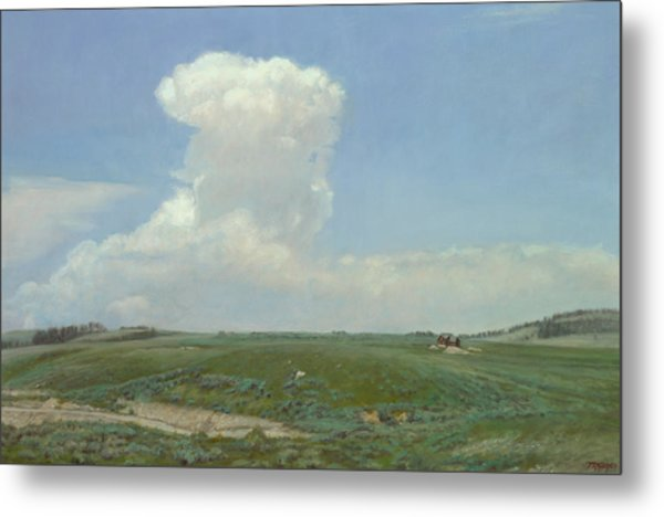 High Plains Big Sky Metal Print by Terry Guyer