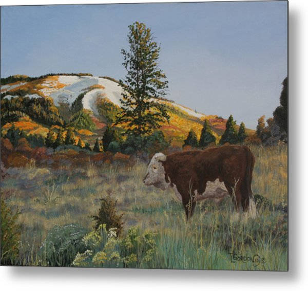 High Range Bull Metal Print