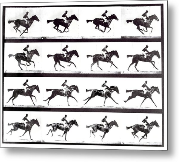 High-speed Sequence Of A Galloping Horse And Rider Metal Print by Eadweard Muybridge Collection/ Kingston Museum/science Photo Library