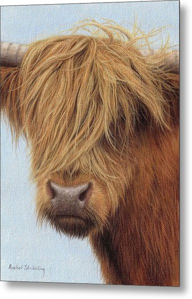 Highland Cow Painting Metal Print