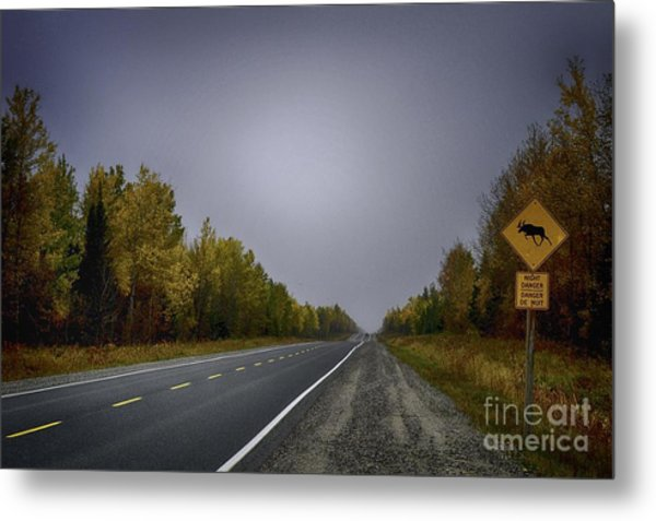 Highway Of Foliage Metal Print by Richard W Lamoureux