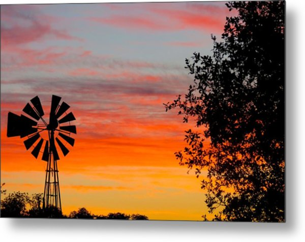 Hill Country Colors Metal Print