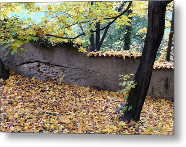 Hill In Prague Metal Print by Gianfranco Evangelista