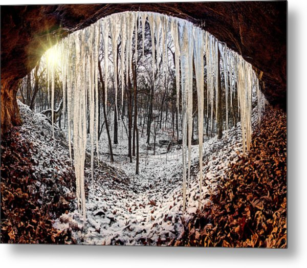 Hinding From Winter Metal Print