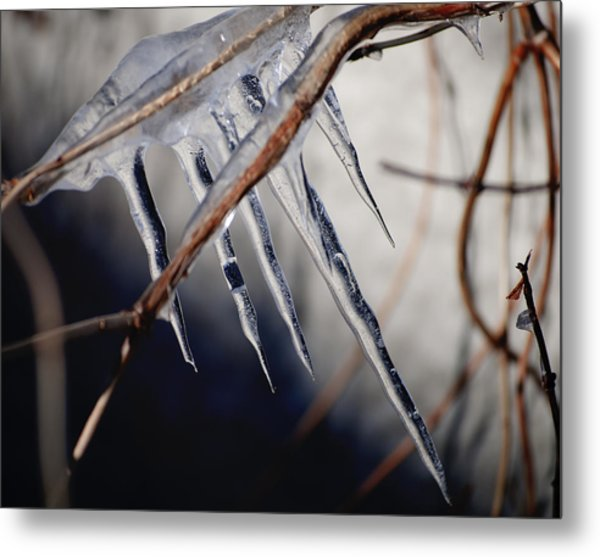 His Biting Touch Metal Print