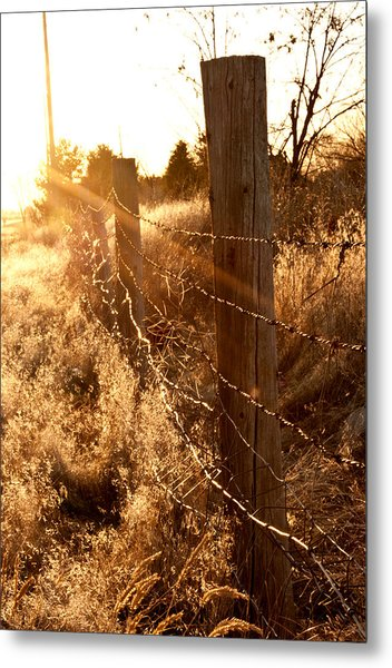His Light Metal Print