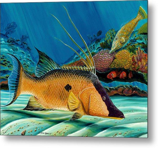 Hog And Filefish Metal Print