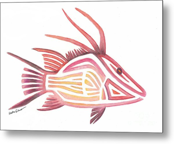 Hogfish Metal Print