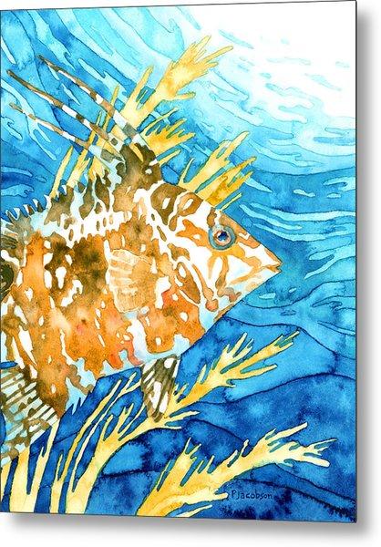 Hogfish Portrait Metal Print