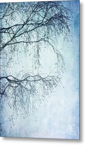 Hold On Till Spring Will Come Metal Print
