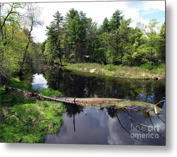 Home Away From Home Metal Print by Roxanne Marshal
