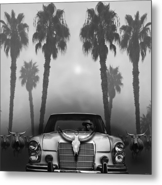 Home On The Range  Metal Print by Larry Butterworth