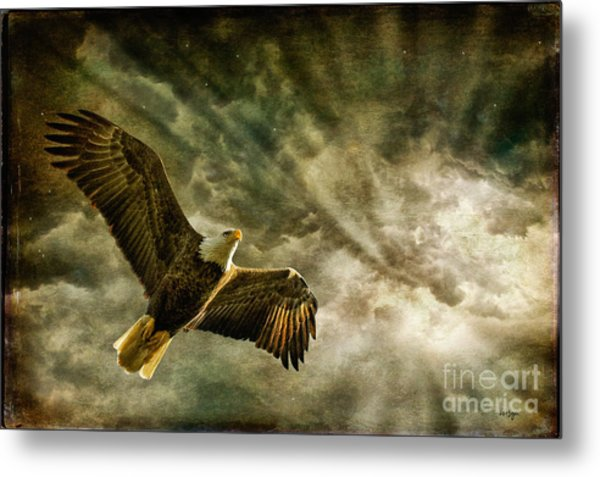 Metal Print featuring the photograph Honor Bound In Blue by Lois Bryan