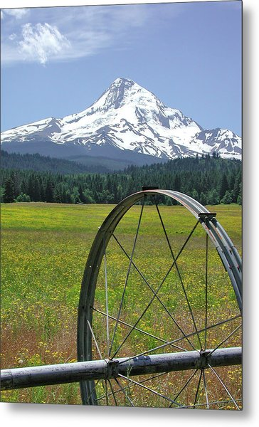 Hood Meadow Metal Print