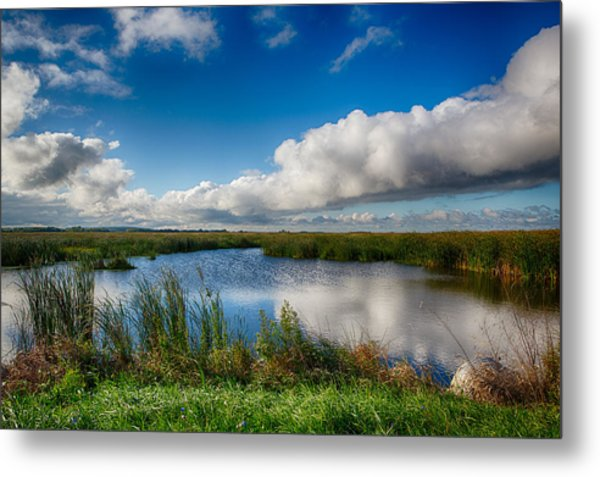 Horicon Marsh Wisconsin Metal Print