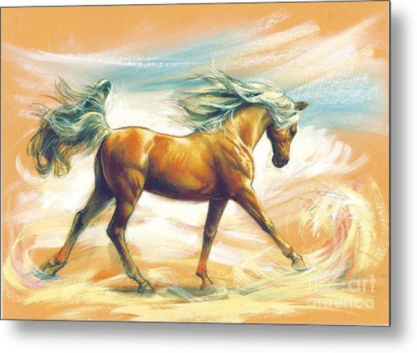 Horse Akalteke Metal Print