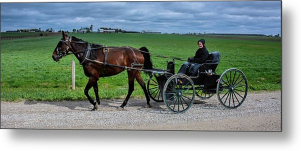 Horse And Buggy On The Farm Metal Print