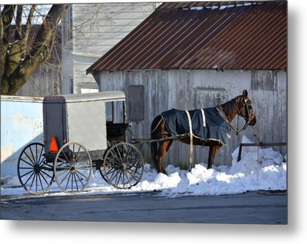 Horse And Buggy Parked Metal Print