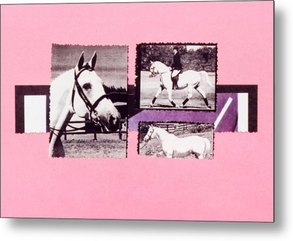 Horse And Rider C Metal Print by Mary Ann  Leitch