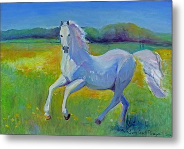 Horse Fancy Metal Print by Gwen Carroll