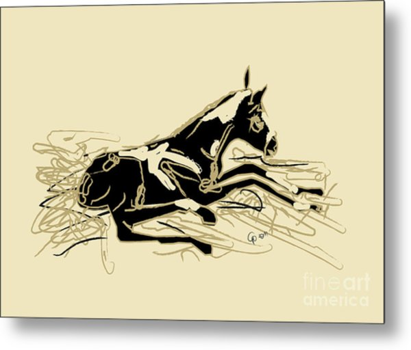Horse-foal- Just Born Metal Print