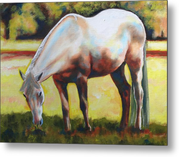 Horse Grazing In The Shade Metal Print