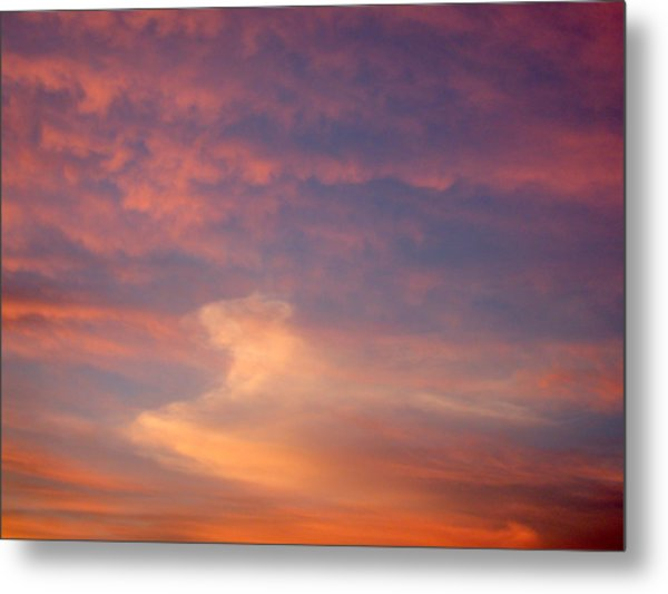 Horse In The Sky Metal Print