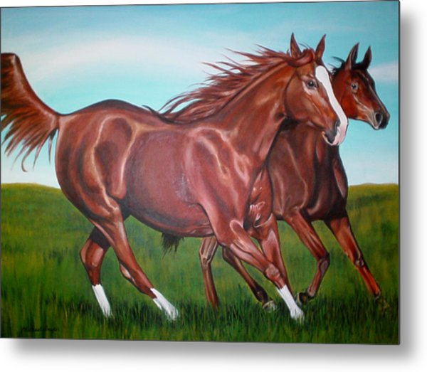 Horse Play Metal Print by Michael Snyder