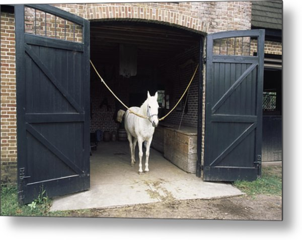 Horse Standing In A Stable, Middleton Metal Print