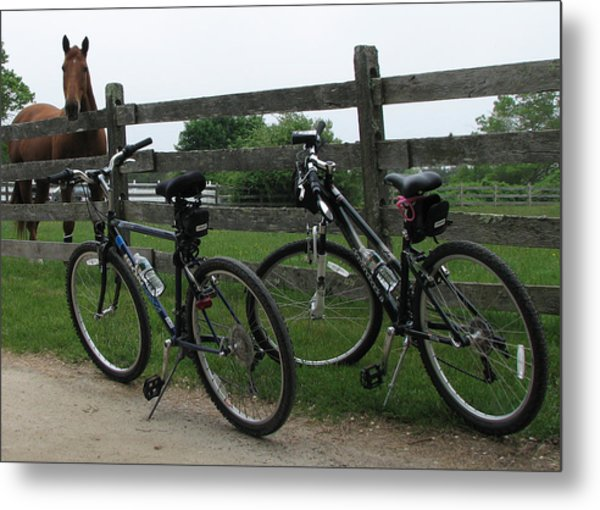 Horse With Bikes Metal Print by Susan OBrien