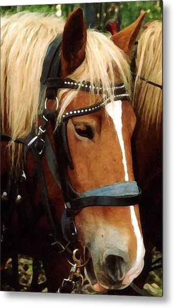 Horsehead Metal Print by Susan Crossman Buscho