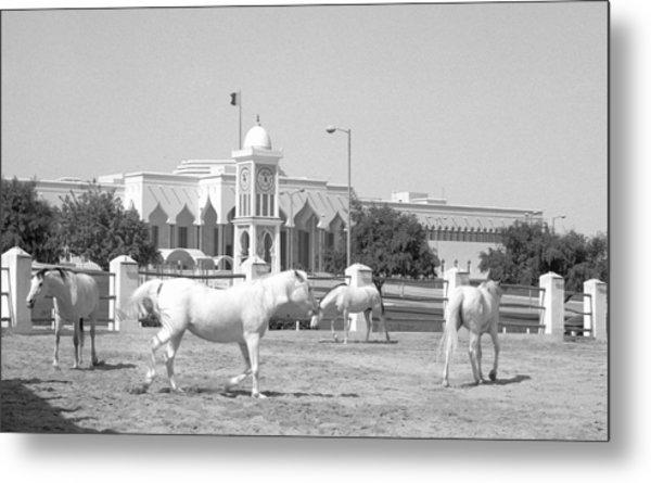 Horses And Emiri Palace Metal Print