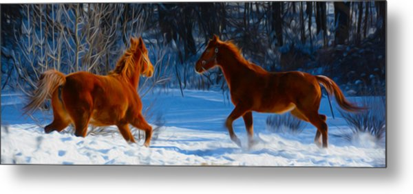 Horses At Play Metal Print