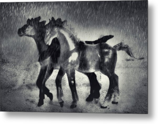 Horses In Twilight Metal Print